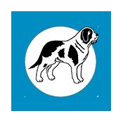 Bernard Health_logo_icon-blue